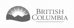the logo of BC